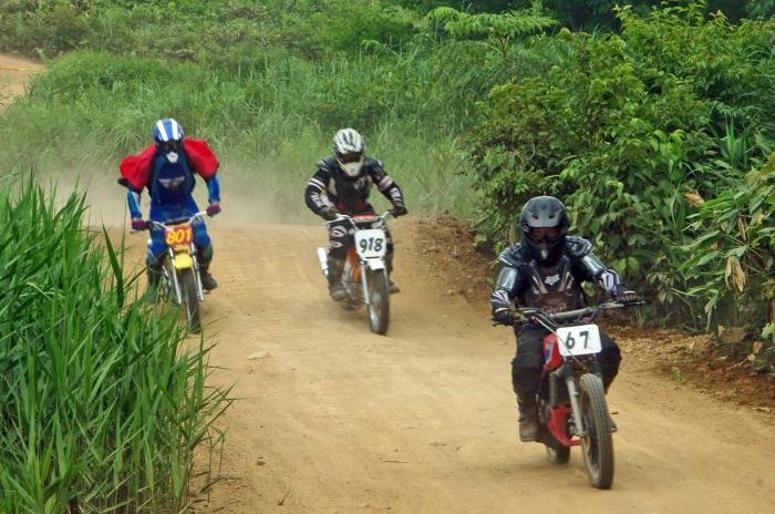 cub-race (375)