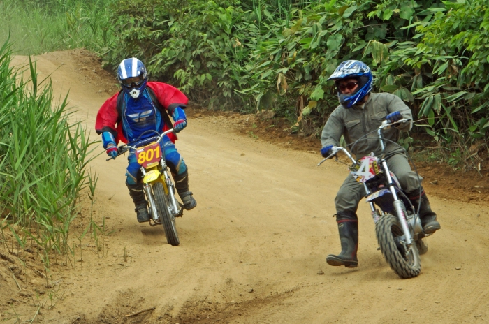 cub-race (387)