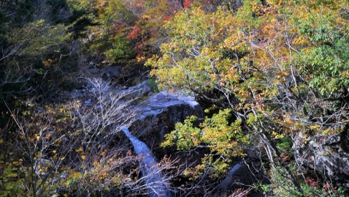 1783魚切滝1510313