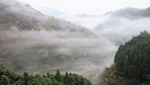 5825滝山峡1511175