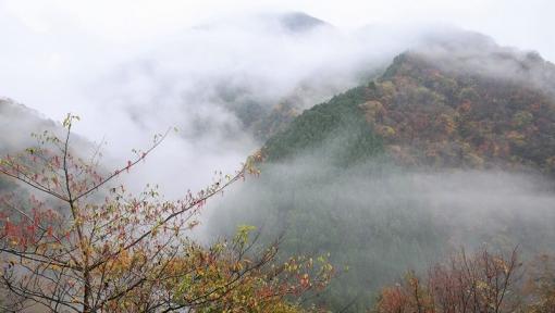 5831滝山峡1511176
