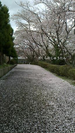 2016-04-08-02.jpg