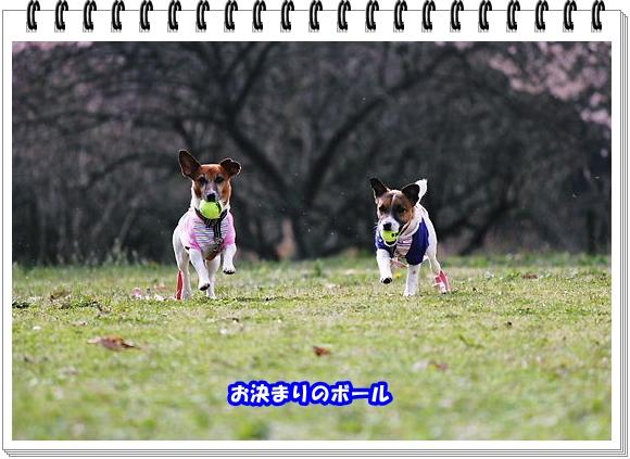 2546ブログNo4