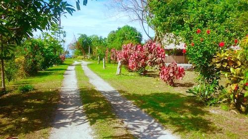 パプアニューギニア_4837