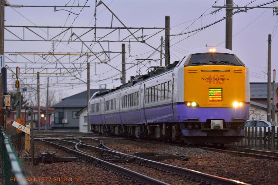 aDSC_6451.jpg
