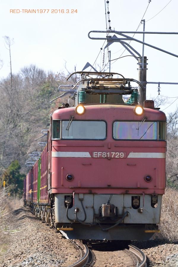 aDSC_6609.jpg
