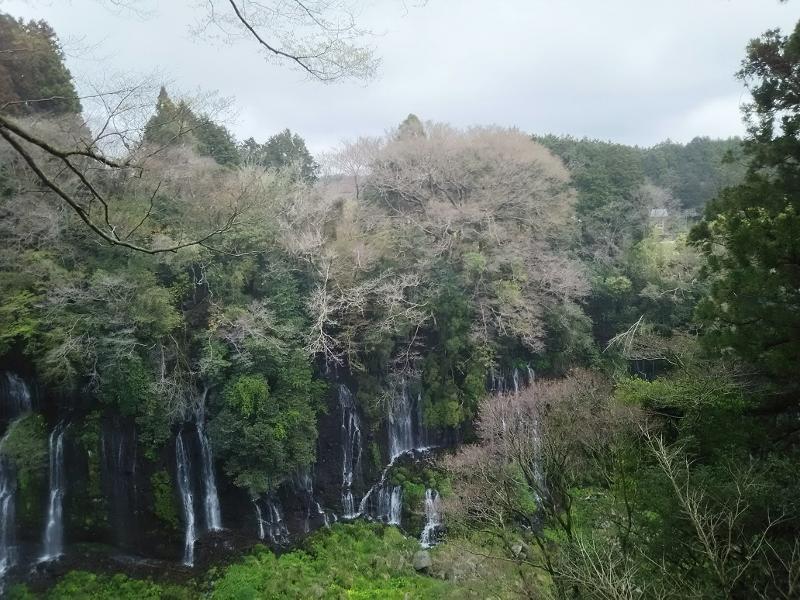 白糸の滝05 (800x600)