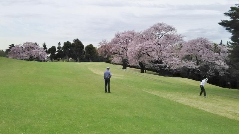 川崎ゴルフ02 (800x450)