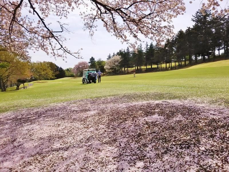 川崎ゴルフ01 (800x600)