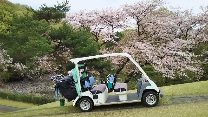 川崎ゴルフ04 (800x450)