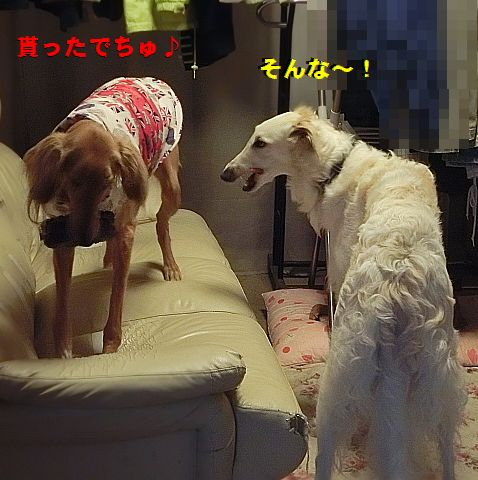 e_20160316021214615.jpg