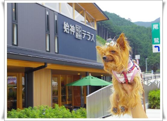 2015和歌山旅行IMGP3769-20151010