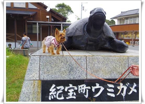 2015和歌山旅行IMGP3779-20151010