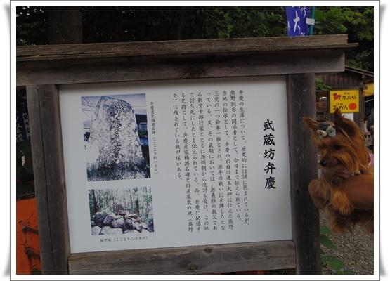 2015和歌山旅行IMGP3790-20151010