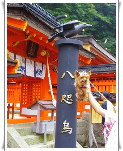 2015和歌山旅行IMGP3797-20151010