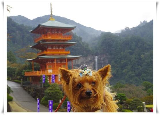 2015和歌山旅行IMGP3801-20151010