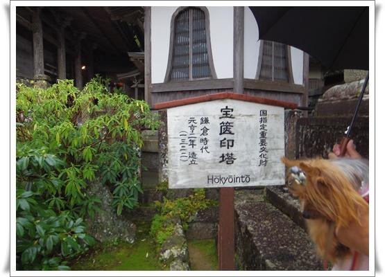 2015和歌山旅行IMGP3805-20151010