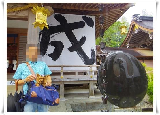2015和歌山旅行2IMGP3826-20151011