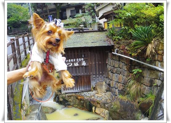 2015和歌山旅行2IMGP3842-20151011