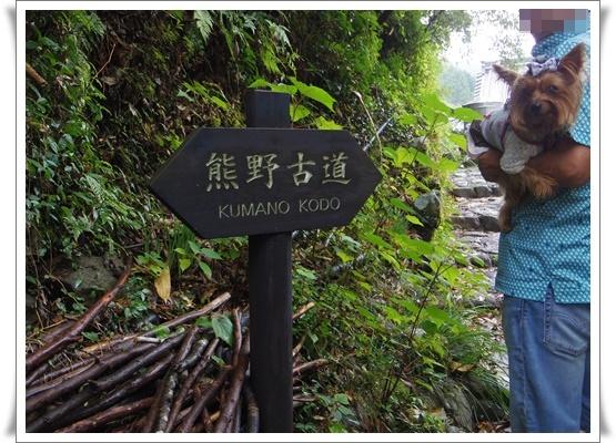 2015和歌山旅行2IMGP3843-20151011