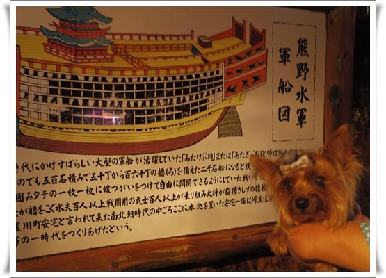 2015和歌山旅行2IMGP3852-20151011