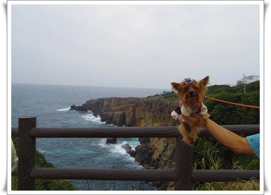 2015和歌山旅行2IMGP3864-20151011
