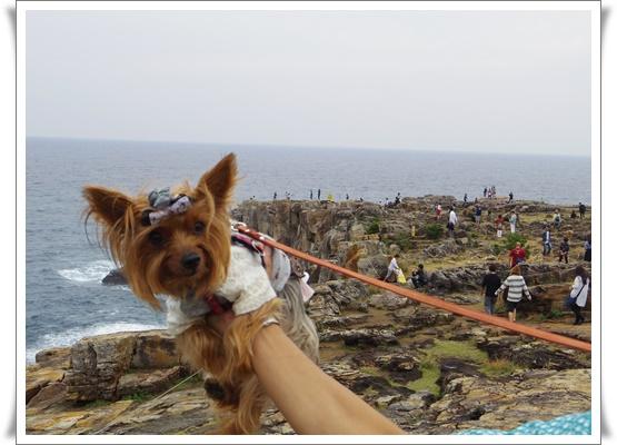 2015和歌山旅行2IMGP3866-20151011