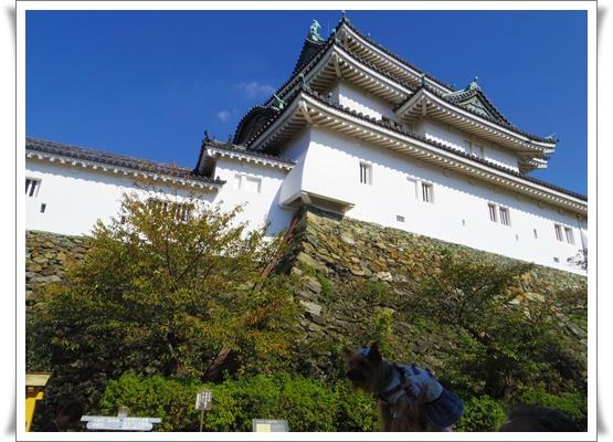 2015和歌山旅行3IMGP3884-20151012