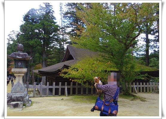 2015和歌山旅行3IMGP3900-20151012