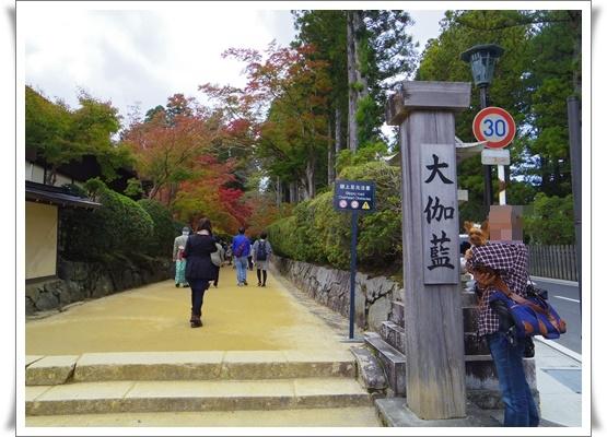 2015和歌山旅行3IMGP3902-20151012