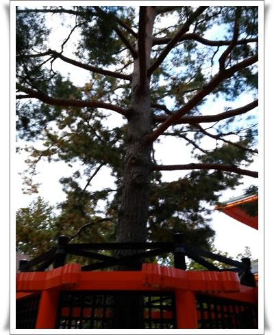 2015和歌山旅行携帯IMG00299_HDR-20151012