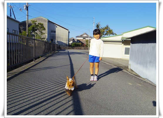 姫路運動会IMGP3917-20151017