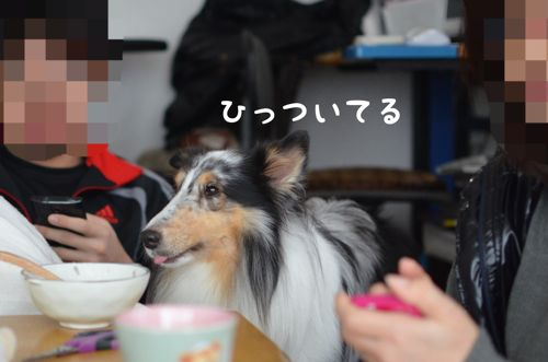IMG_7057.jpg