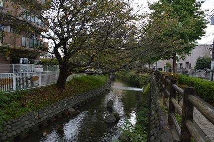 2015-10-18_41.jpg