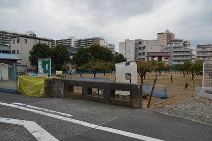 2015-10-31_52.jpg