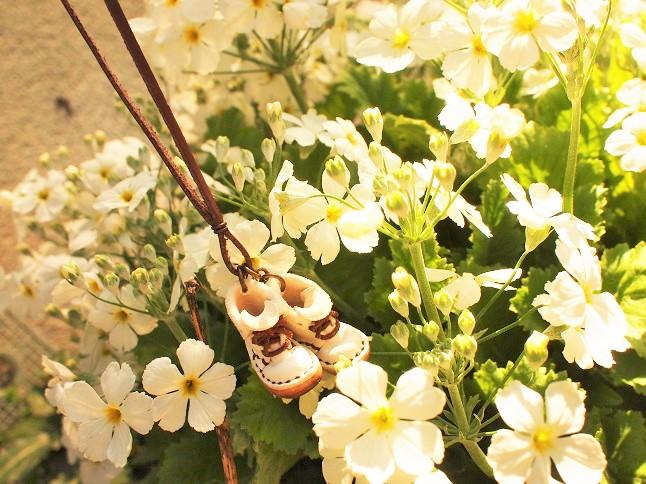 ぷちぷちと花