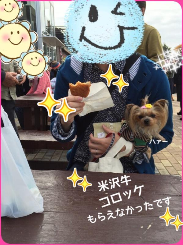 201511251107446db.jpg