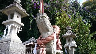 狛犬のしめ縄は銅製