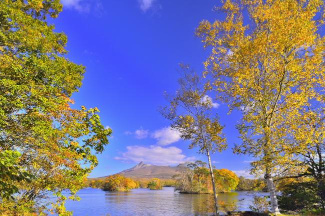 197, 国定公園大沼の秋
