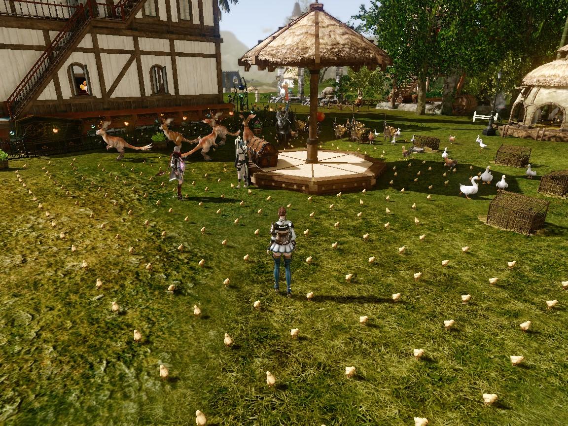 ひよこの庭