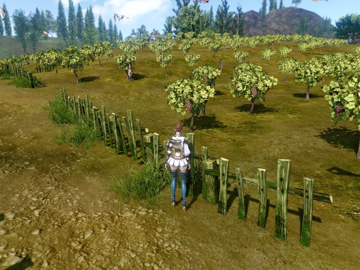 いただき農園