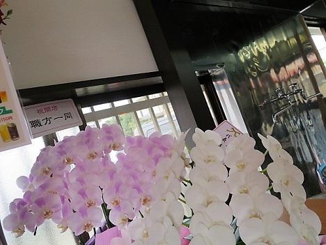 misakiya16.jpg