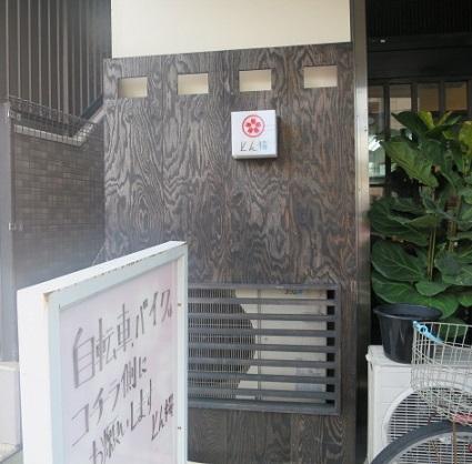 ton-zakura3.jpg