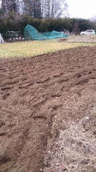 20160323畑しごと2016―1
