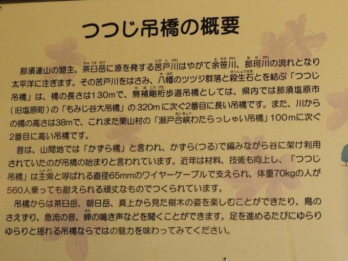 blogPA059081-2.jpg