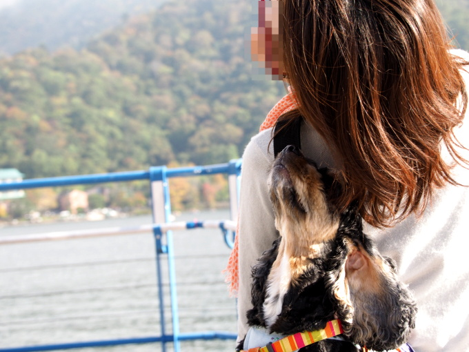 blog_PA038243.jpg