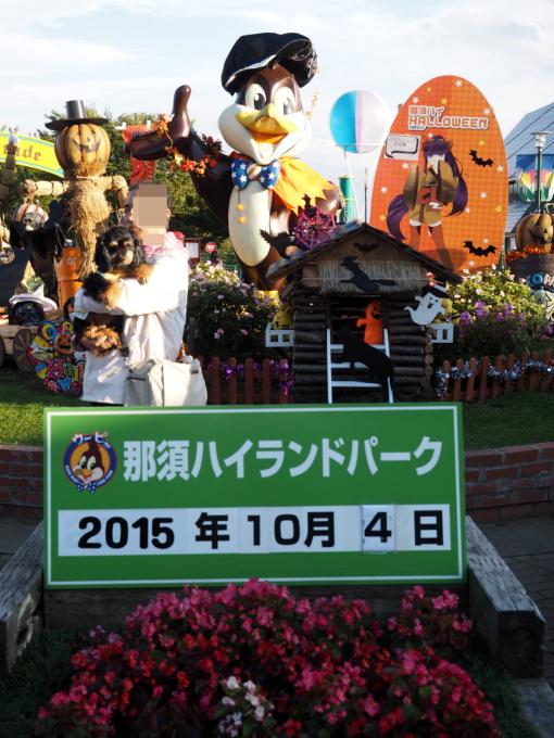 blog_PA048595.jpg