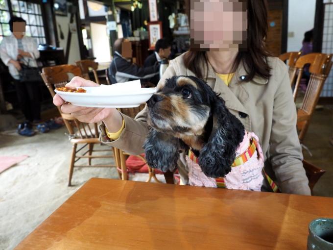 blog_PA059198.jpg