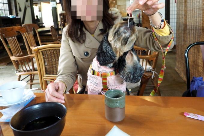 blog_PA059272.jpg