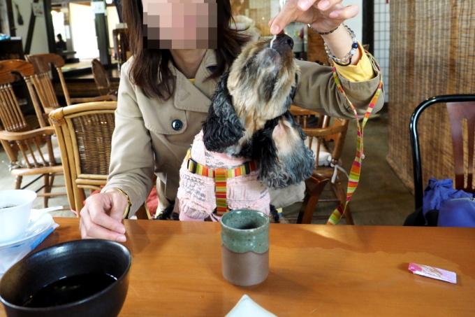 blog_PA059274.jpg